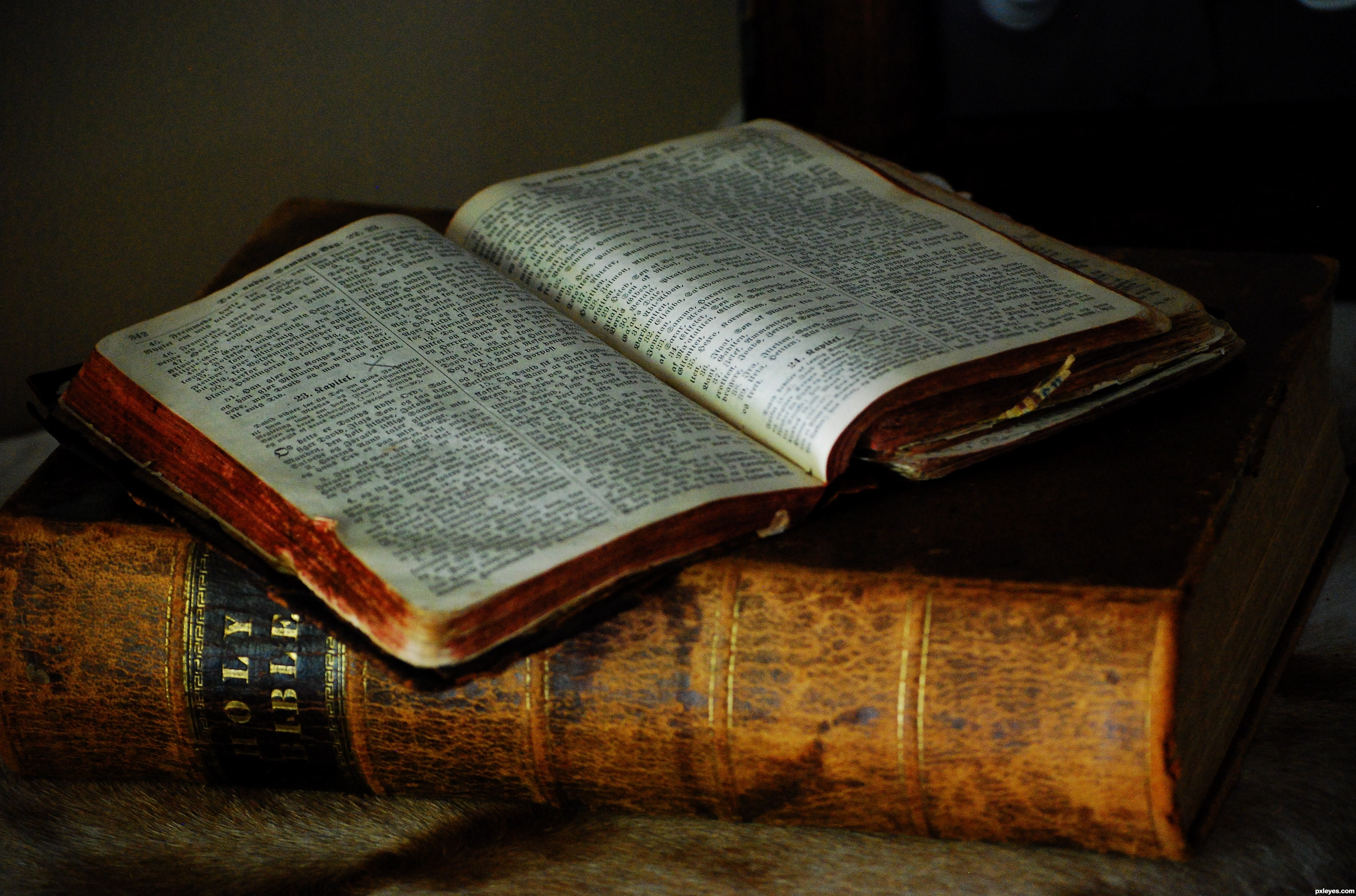 How our Reading of the Bible Affects our View of Culture